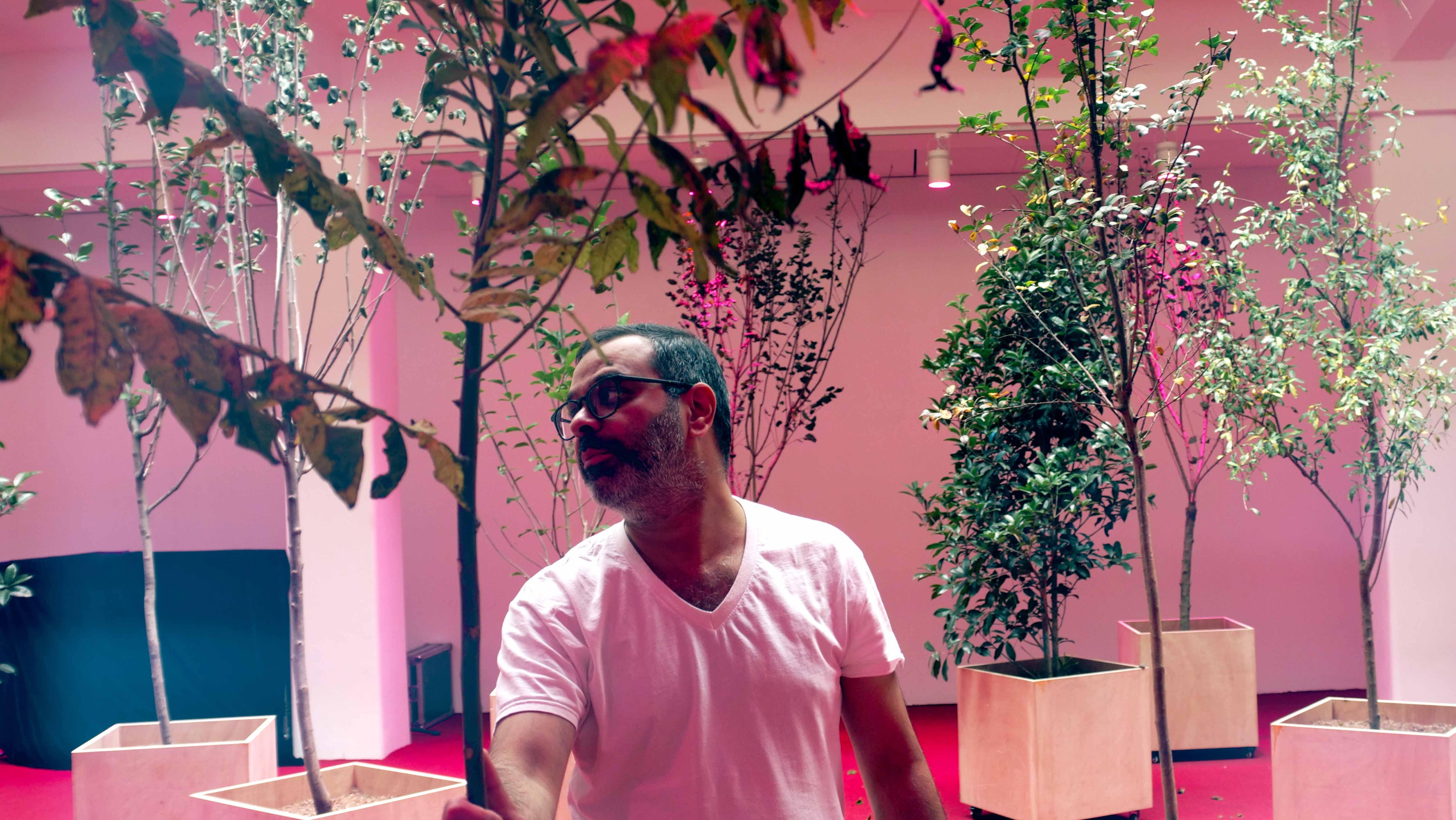 【新闻图片】知名艺术家阿萨德·拉扎与其装置艺术作品《根序列。母语》