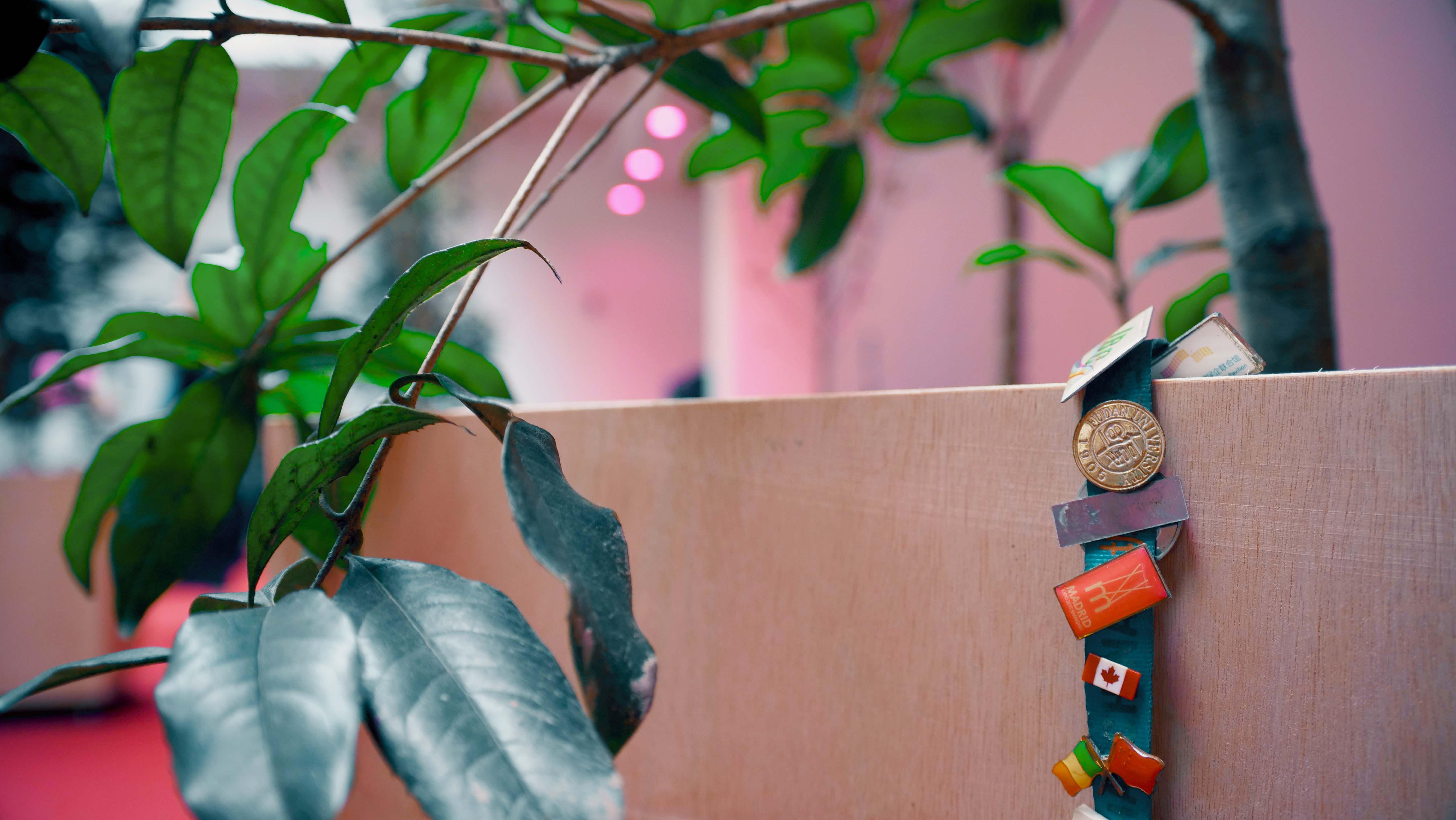 【新闻图片】劳斯莱斯汽车携手外滩美术馆展现阿萨德·拉扎装置艺术作品《根序列。母语》1